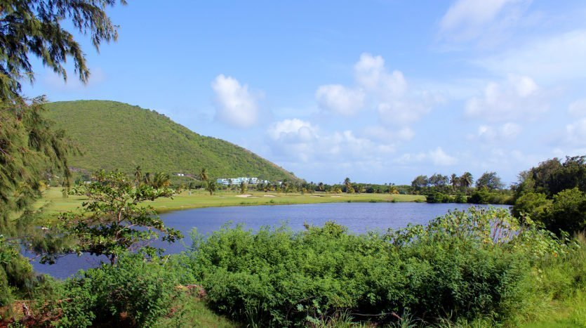 saj land for sale st kitts 12
