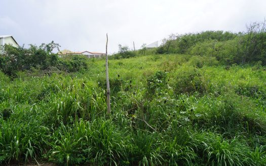st.kitts land for sale in vieux
