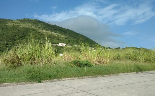 pelican bay at st kitts