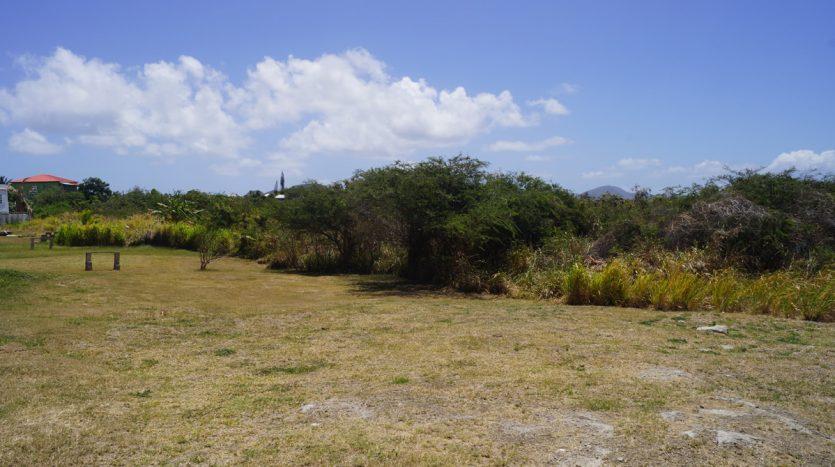 best nevis island real estate
