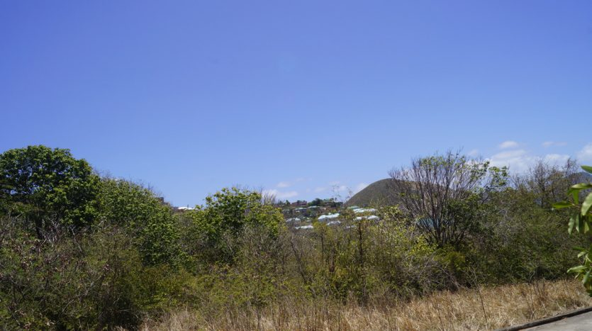 best real estate in nevis