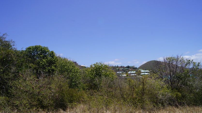 real estate in nevis