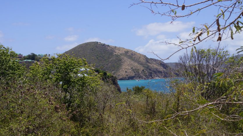 st kitts land for sale
