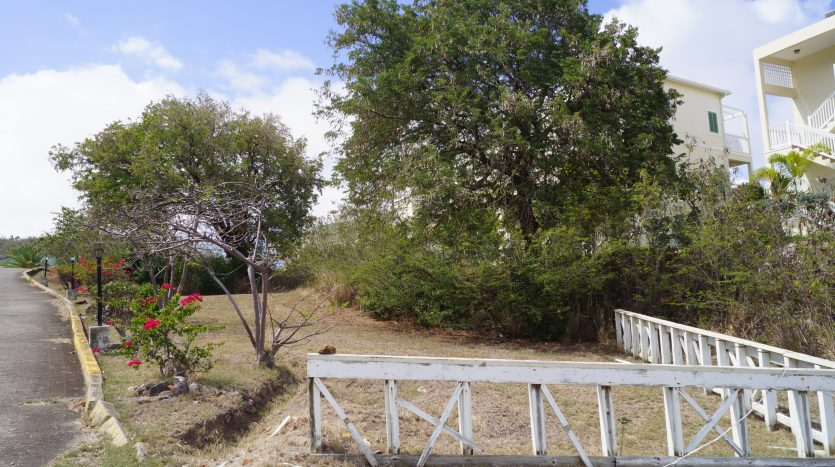 st kitts property for sale