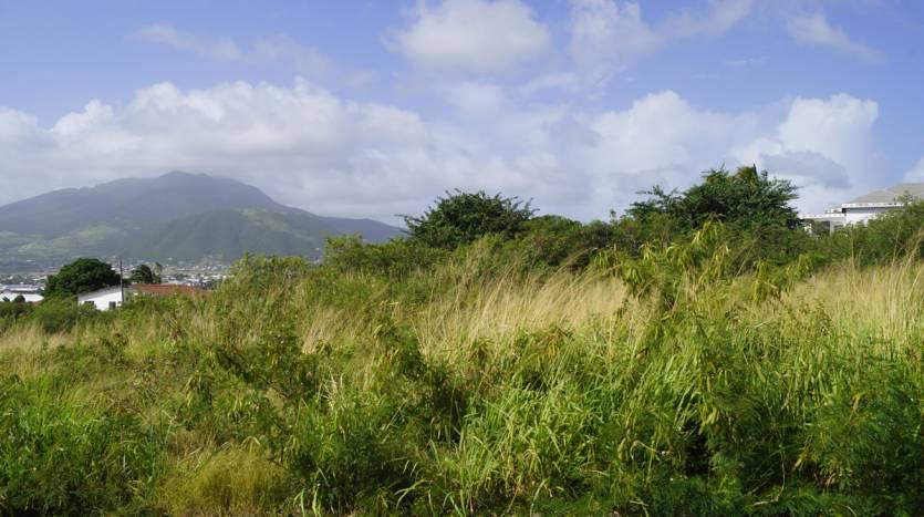Property St Kitts